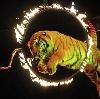 Цирки в Кушнаренково